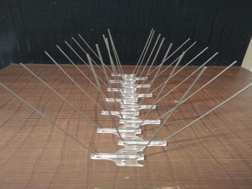 bird spikes, pune, pimpri chinchwad(PCMC)