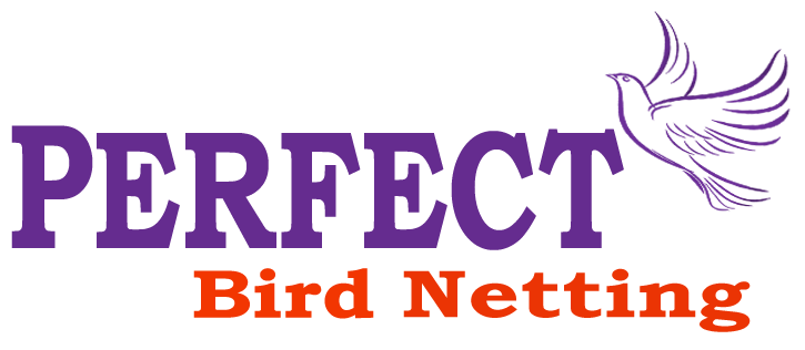 Bird netting service in Pune and PCMC